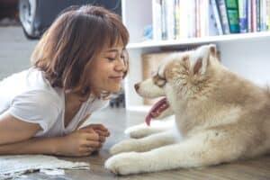 chien et son maître couché
