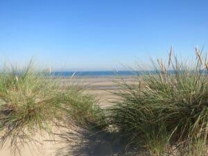 dune la panne